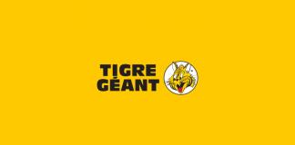 Sondage Tigre Géant
